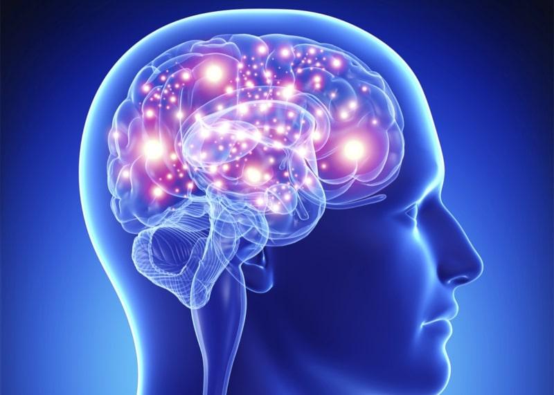 Citoquinas y excitabilidad cerebral